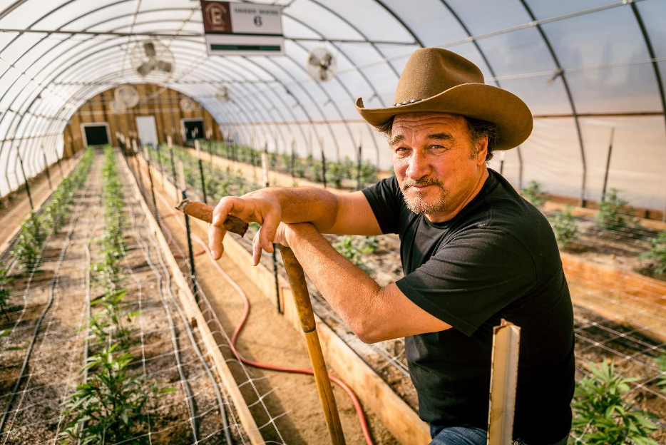 "Live Nation Productions, Jim Belushi, and His (Legal) Cannabis Farm, Team Up for Reality Series ""GROWING BELUSHI"""