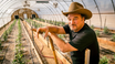 """Live Nation Productions, Jim Belushi, and His (Legal) Cannabis Farm, Team Up for Reality Series """"GROWING BELUSHI"""""""